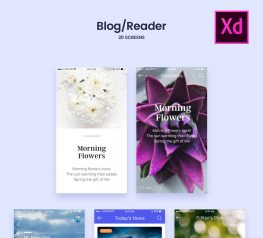 UX/UI Adobe design UI Kit for Blog/Readers Screens