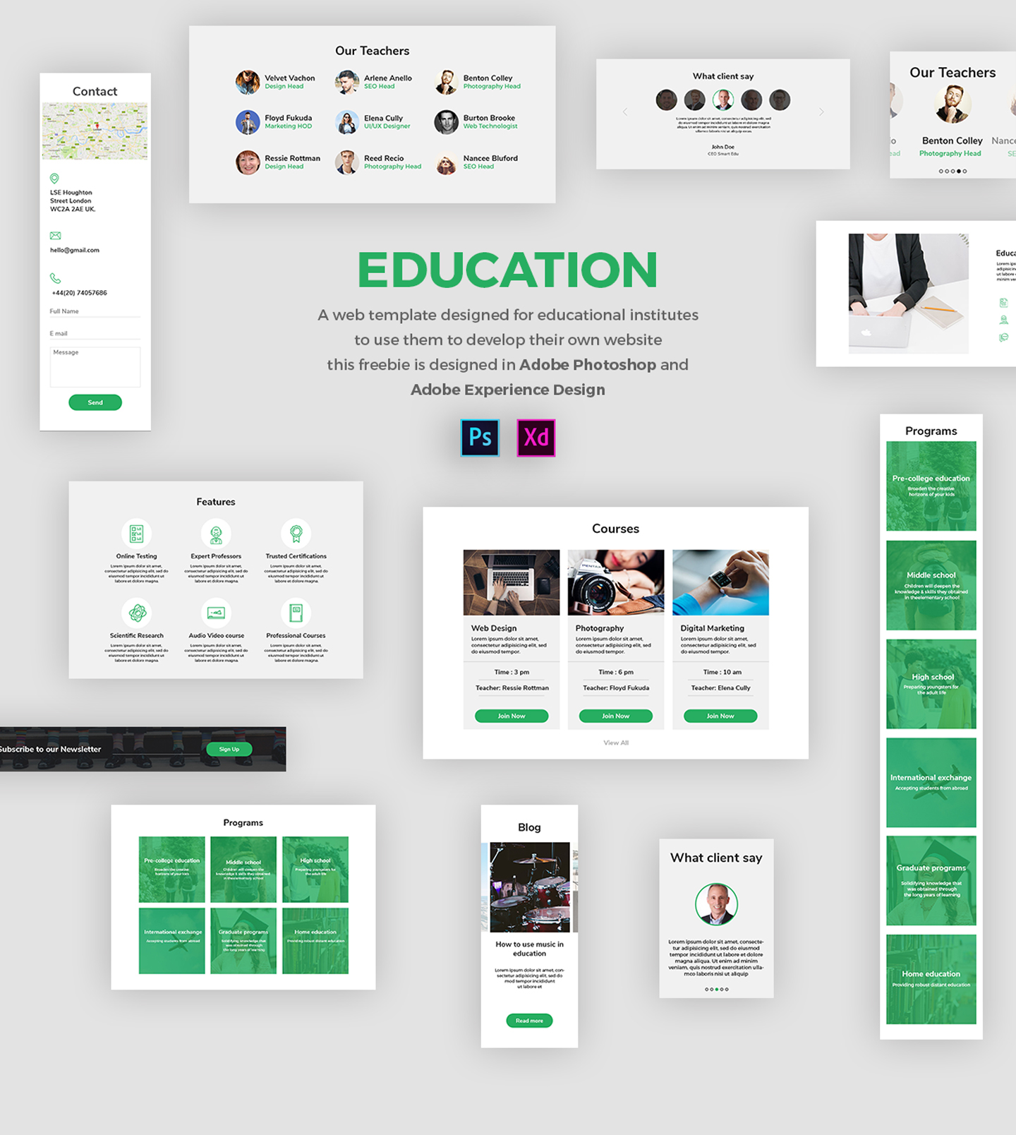 education-ui-kit-adobe-xd-freebie - FreebiesUI
