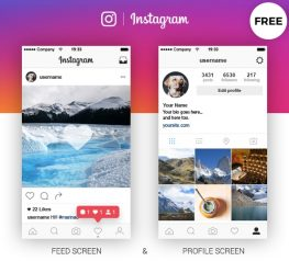 Instagram Feed & Profile UI Kit - Free Screens for PSD