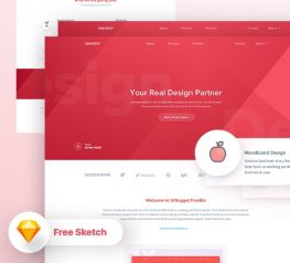 UINUGGET Freebie for Sketch Designers - Free UI UX Resource