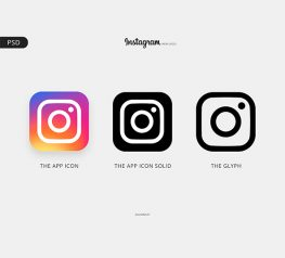 Instagram Logo & Color Palette for PSD