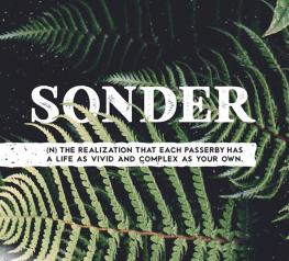Sonder Free Type Family