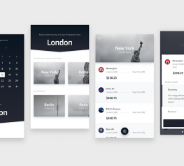 Flight App Design UI Kit Concept