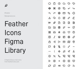266 Feather Figma Icons Library for Web Designers