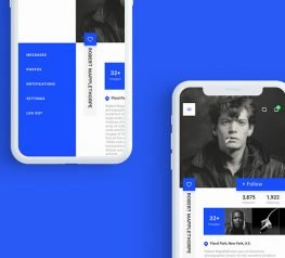 User Profile UI Kit free Download for Xd