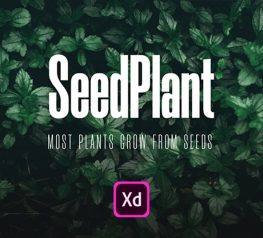 E-commerce App design - SeedPlant - Xd resource