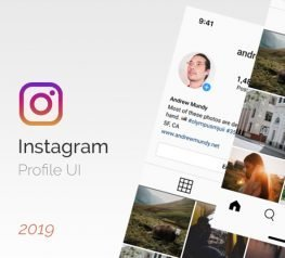 Instagram UI Profile - Summer 2019