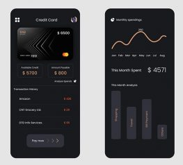 Credit Card Spendings app sketch figma adobexd free