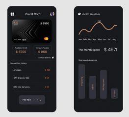 Credit Card Spendings app sketch figma adobexd free